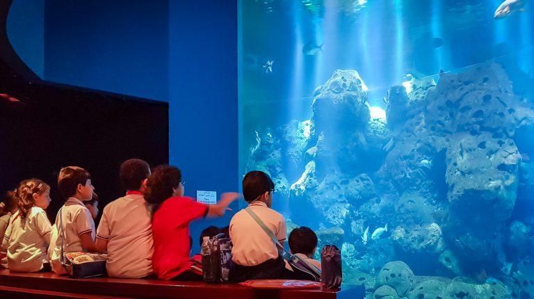 Scientific Center Year 2 trip - Gulf British Academy