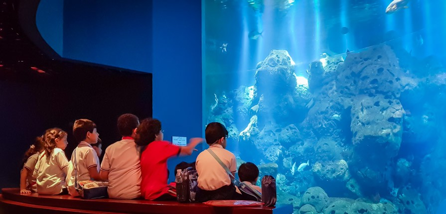 Scientific Center Year 2 trip - Gulf British Academy