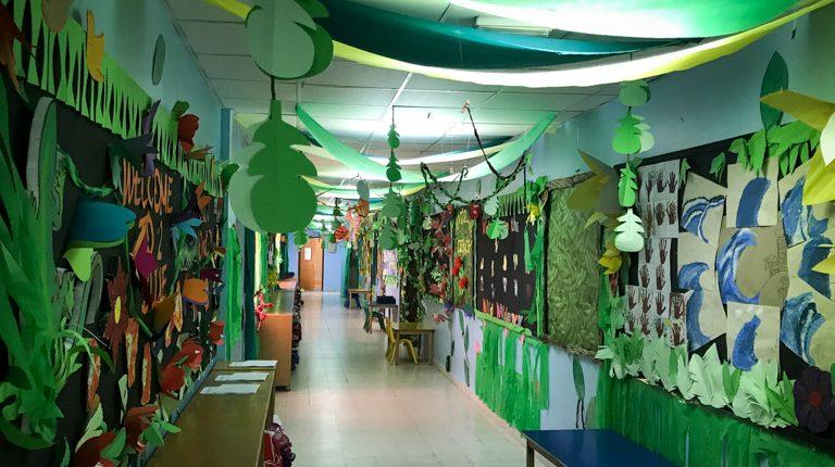 creative curriculum displays