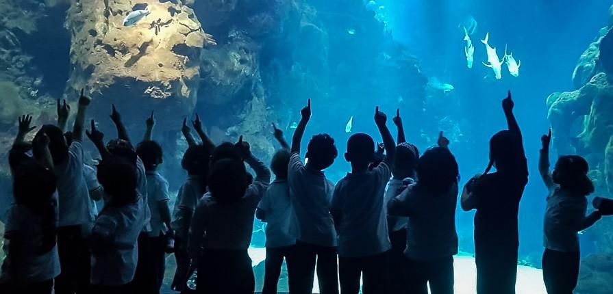 Reception at The Aquarium